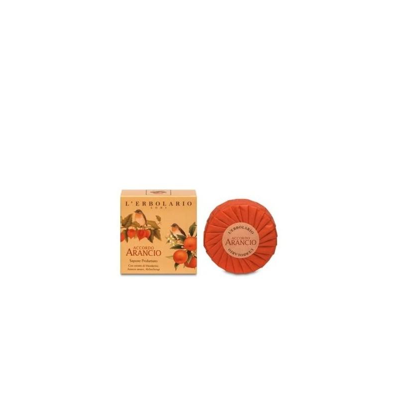 Jabón en pastilla Aloe Vera DR ORGANIC 100 gr