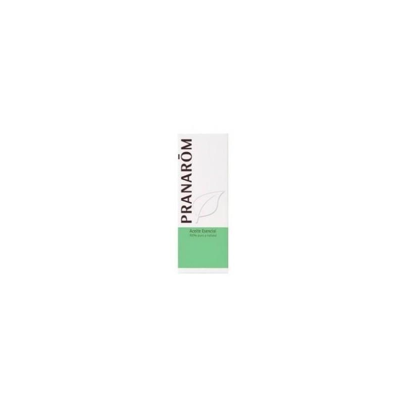 Aceite Esencial de Árbol de Té MaterNatura